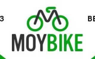 День велосипеда хоффман