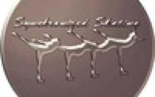 Синхронное катание на коньках