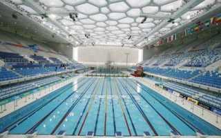 Плавание 50 метров норматив
