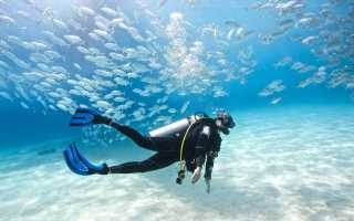 Снаряжение аквалангиста