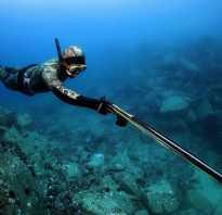 Нужно ли разрешение на подводное ружье