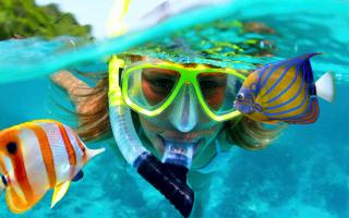 Подводное плавание как называется