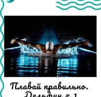 Техника плавания баттерфляй