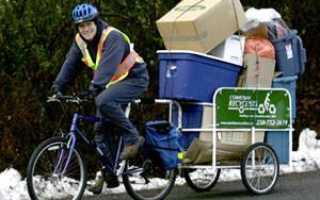 Прицеп на детский велосипед